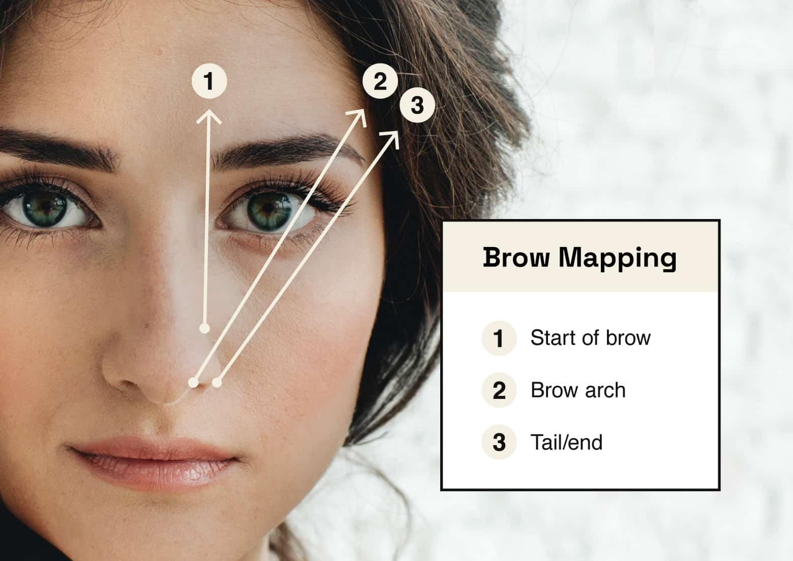 brow mapping guide