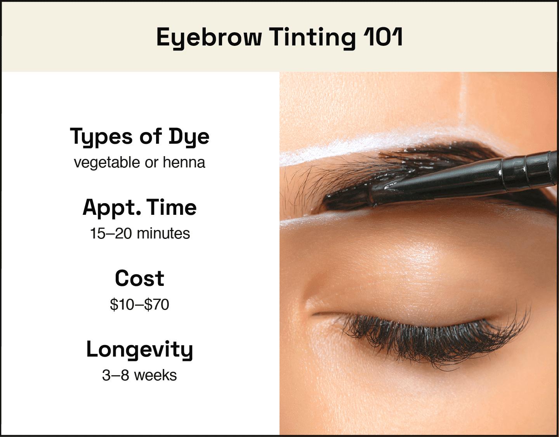 image describing main info for eyebrow tinting