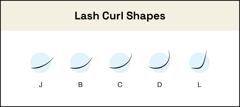 lash curl shapes